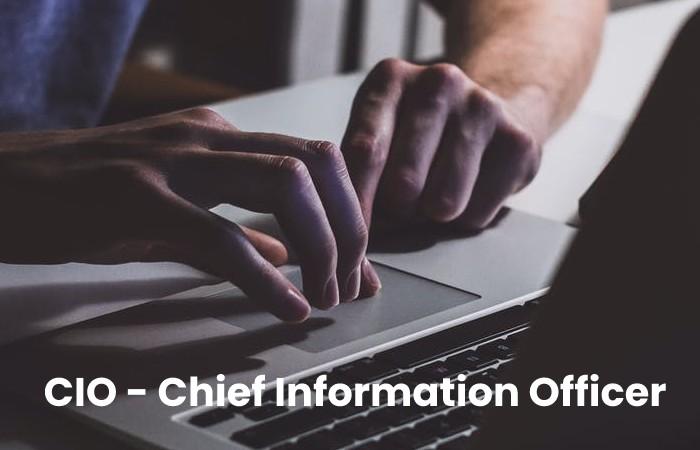CIO - Chief Information Officer (1)