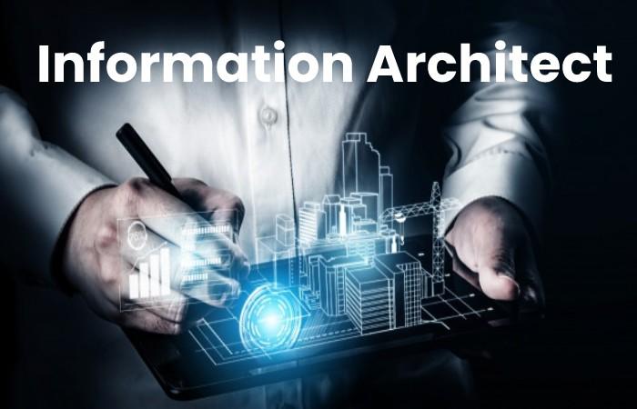 Information Architect