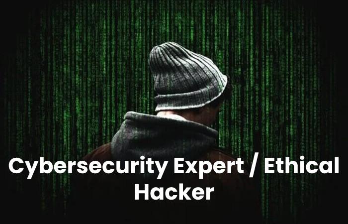 cybersecurity expert/ethical hacker